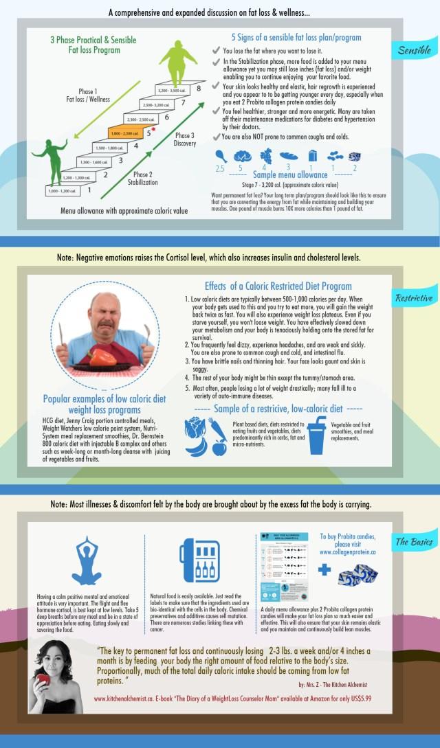 Kitchen Alchemist Plan_infograph