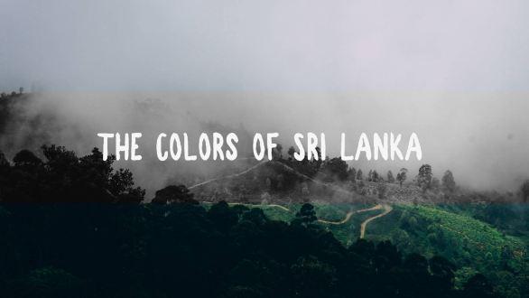 sri lanka travel videography