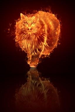 Bizet in Flames