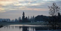 RRR pond at dawn 12-2-14
