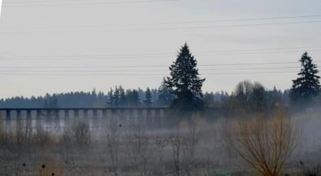 train trestle 3-19-15