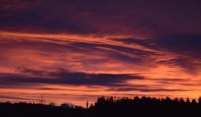 2-3-16 sunrise is back