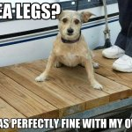 Sea Legs?