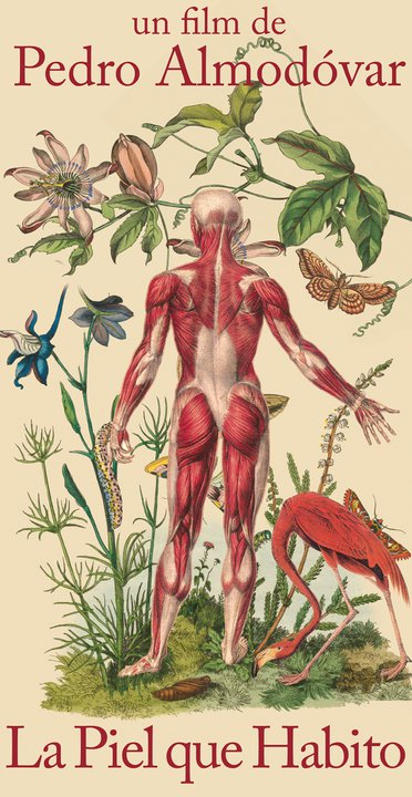 The Skin that I Inhabit, La Piel que Habito Teaser Poster