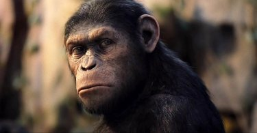 Caesar, Rise of the Planet of the Apes, 2011