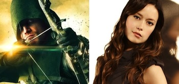 Stephen Amell Summer Glau Arrow
