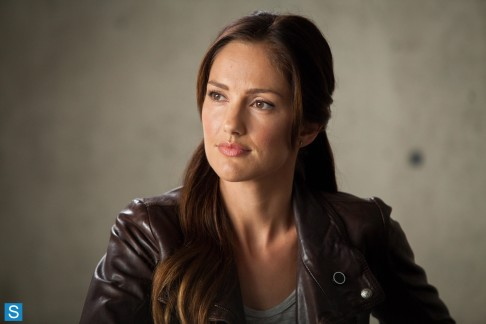 Minka Kelly Almost Human Perception