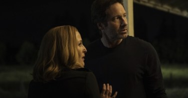 David Duchovny Gillian Anderson The X Files