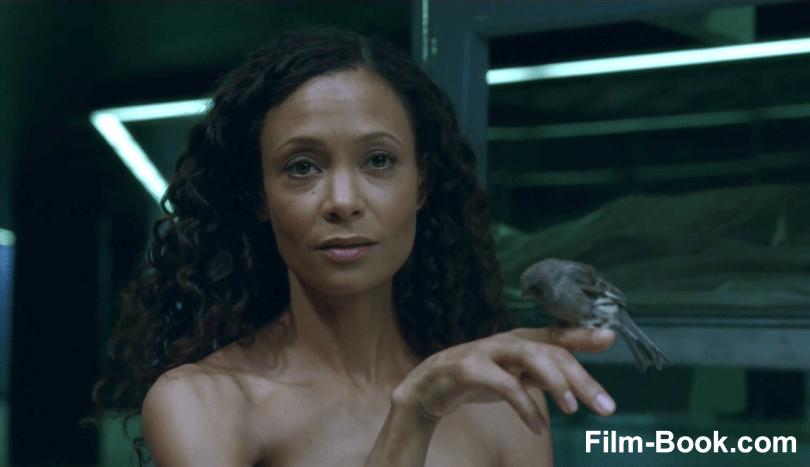 Thandie Newton Bird Westworld Contrapasso