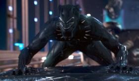 Black Panther FilmBookCast