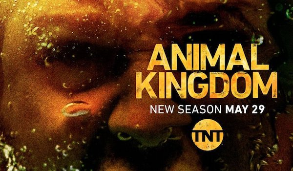 ANIMAL KINGDOM: Season 3 TV Show Trailer 2: The Cody Family is a Twenty-Year-Old Crime Organization [TNT]
