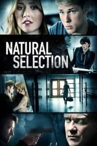 Natural Selection