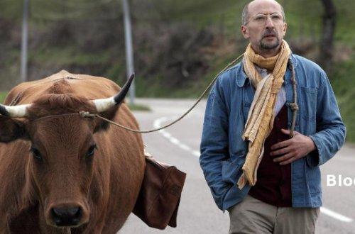 Blogger-Special Road Trip mit Tieren im Film - Unterwegs mit Jacqueline