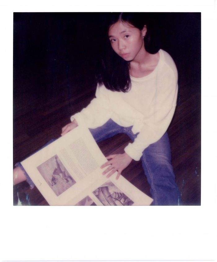 ,Impossible Project, SX-70