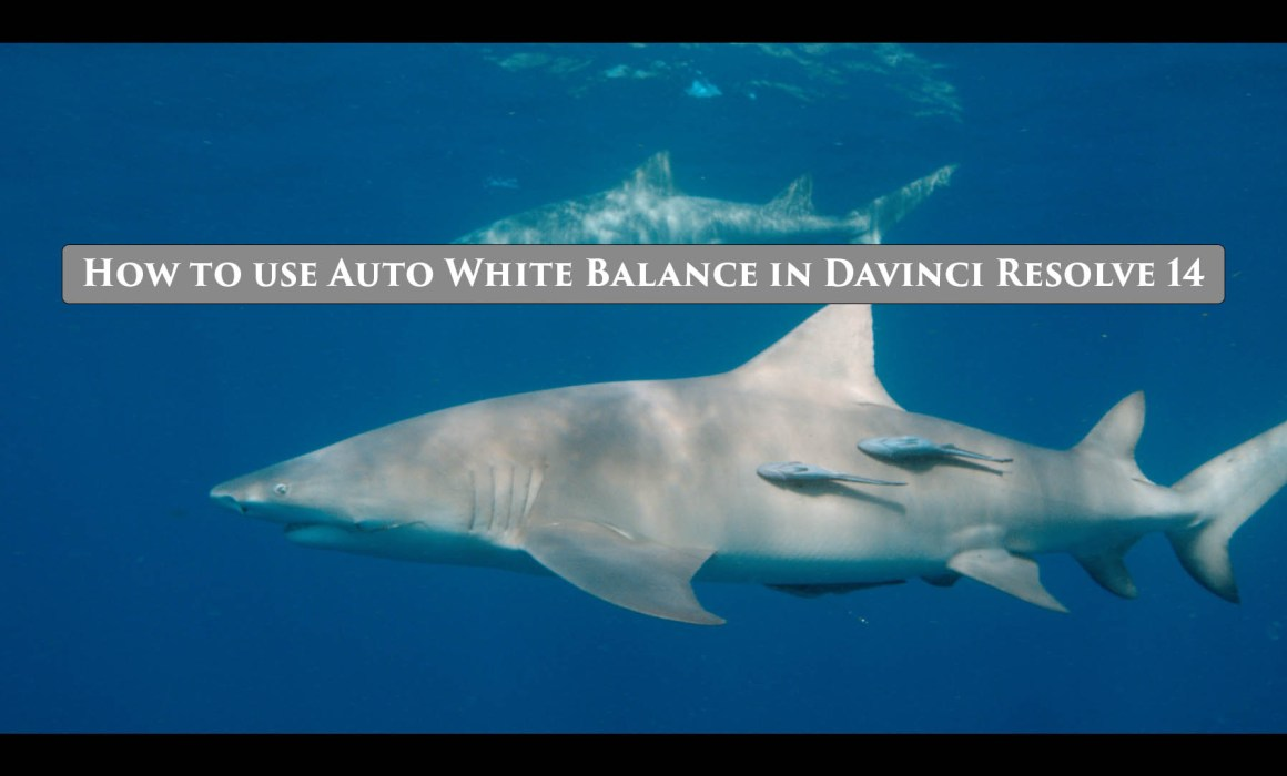 How to use Auto White Balance in Davinci Resolve 14
