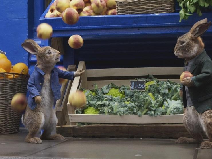 Peter Rabbit 6