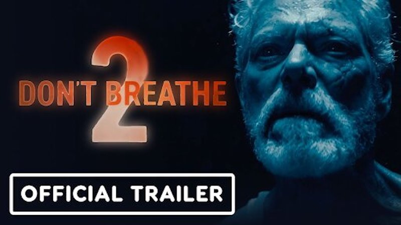 """'123Movies"""" How to watch Don't Breathe 2 anywhere? – FilmyOne.com"""