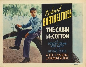 Cabin in the Cotton 10