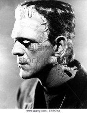 Frankenstein 14