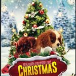 Project: Puppies for Christmas (2018) Online Subtitrat in Romana