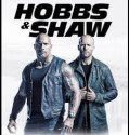 Hobbs and Shaw (2019) online subtitrat in romana HD