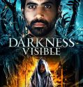 Darkness Visible (2019) online subtitrat in romana HD