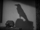 Raven Cinematography