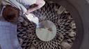 fthotwttf-cinematography