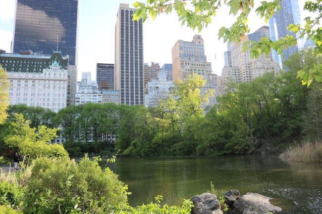 New York City's Central Park is the most used filming location in the world!