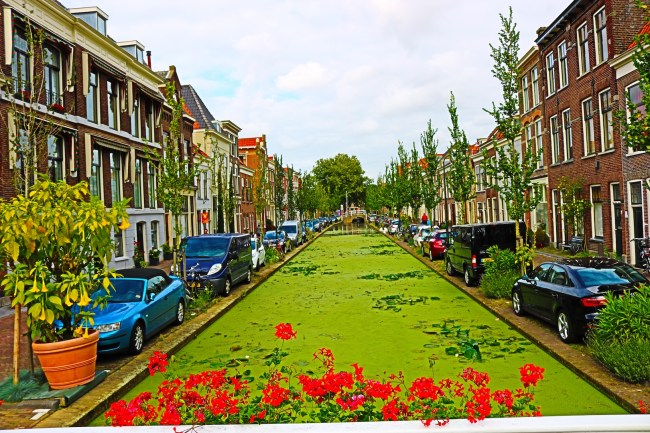 Residential street in Delft