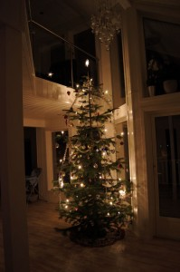 Christmas tree in our new house.