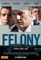 Felony Türkçe Altyazı izle
