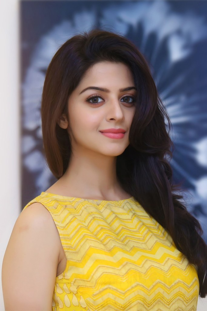 56+ Beautiful Photos of Vedhika 127