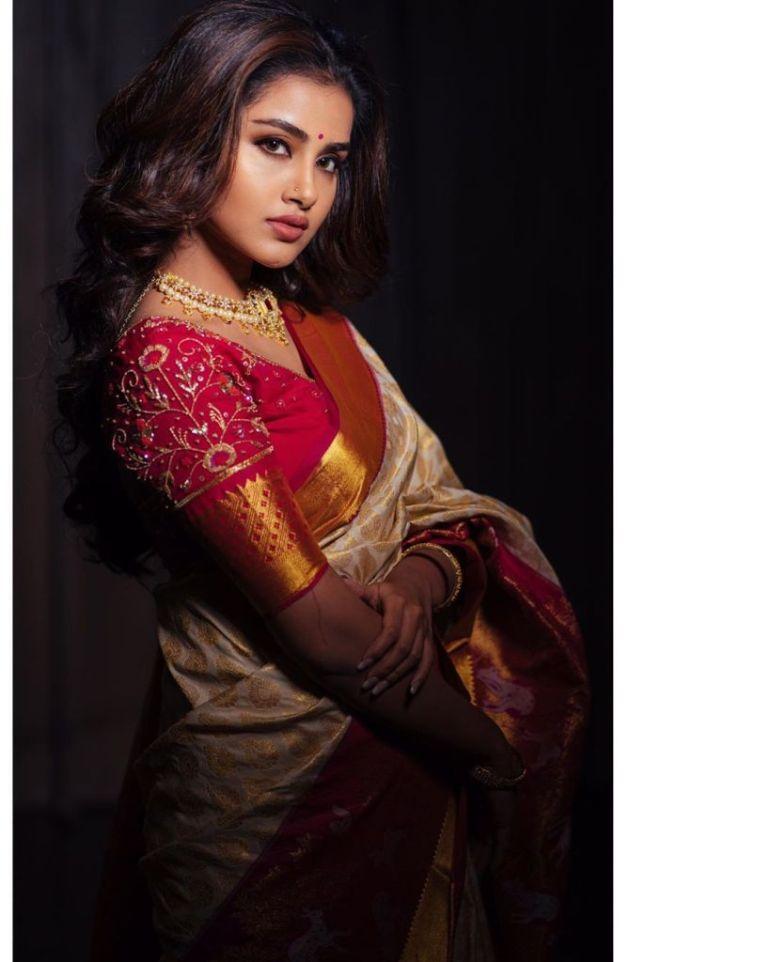 54+ Gorgeous Photos of Anupama Parameswaran 108
