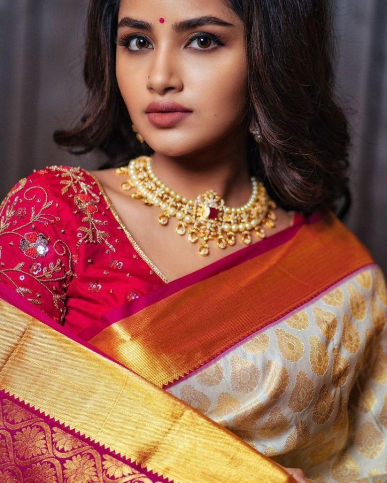 54+ Gorgeous Photos of Anupama Parameswaran 109