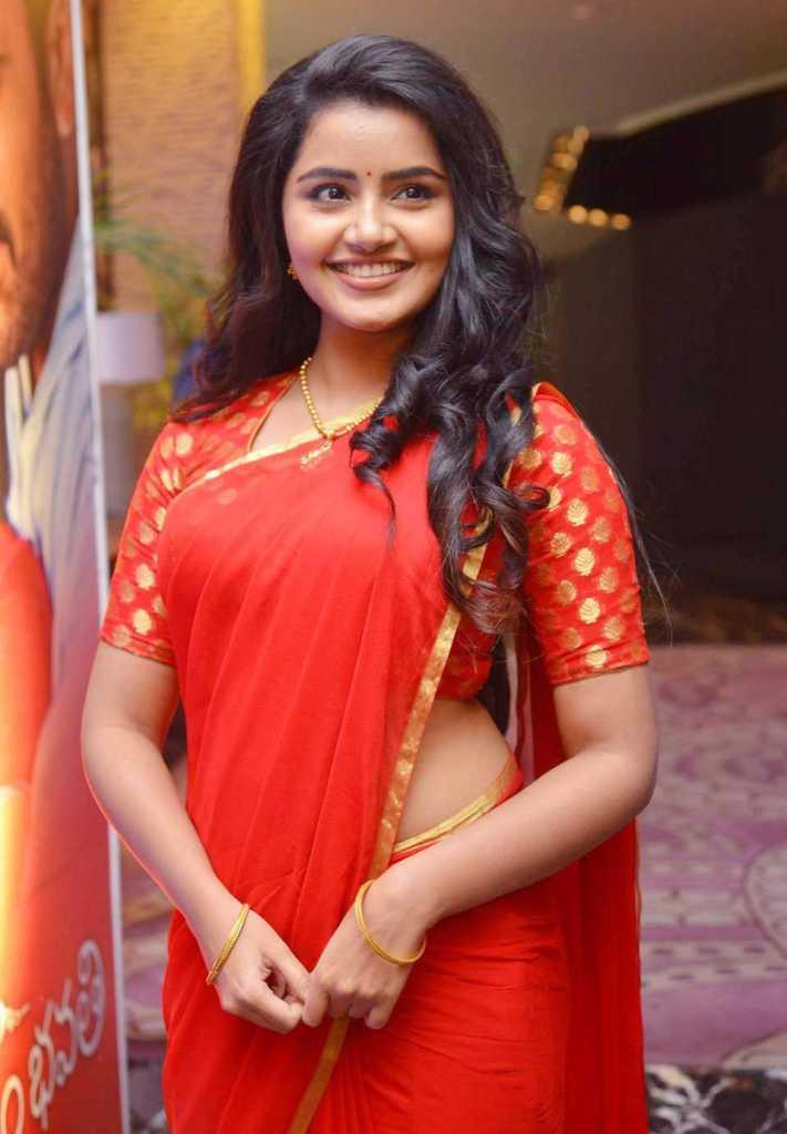 54+ Gorgeous Photos of Anupama Parameswaran 133