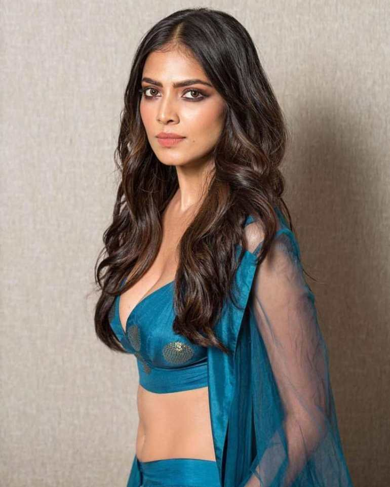 117+ Stunning Photos of Malavika Mohanan 168