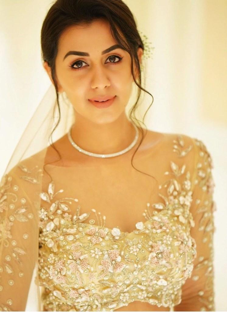 36+ Stunning Photos of Nikki Galrani 33