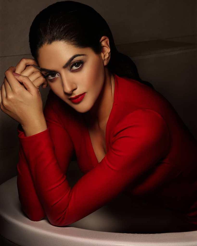 32+ Gorgeous Photos of Sakshi Choudhary 13