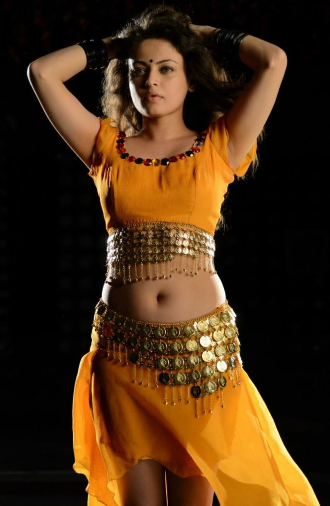 43+ Gorgeous Photos of Sneha Ullal 128