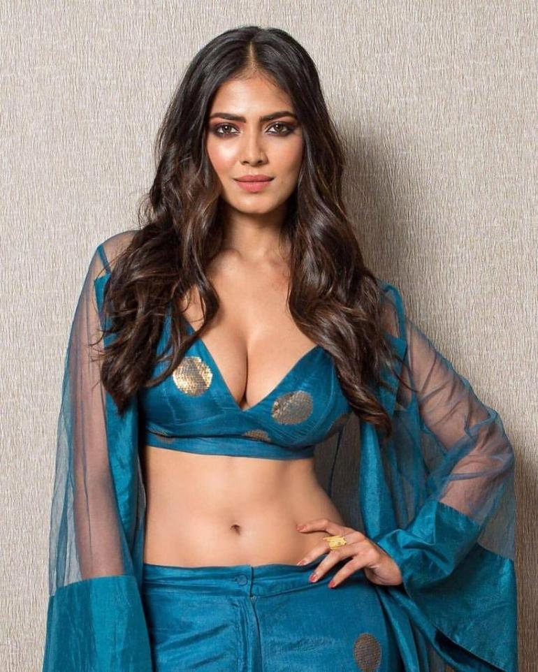 117+ Stunning Photos of Malavika Mohanan 164