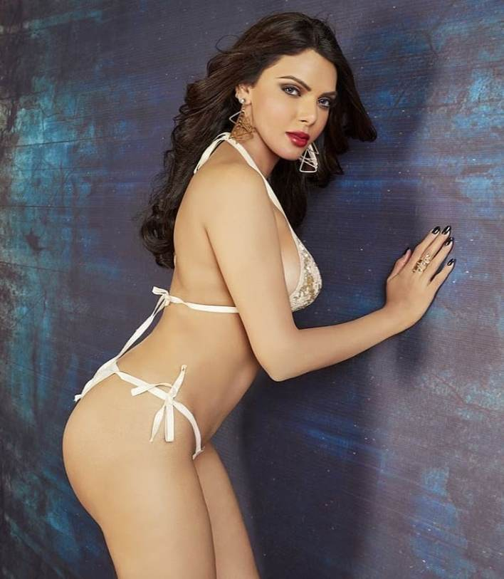 49+ Glamorous Photos of Sherlyn Chopra 38