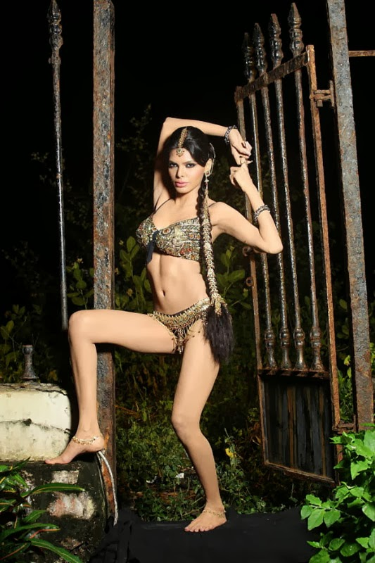 49+ Glamorous Photos of Sherlyn Chopra 7