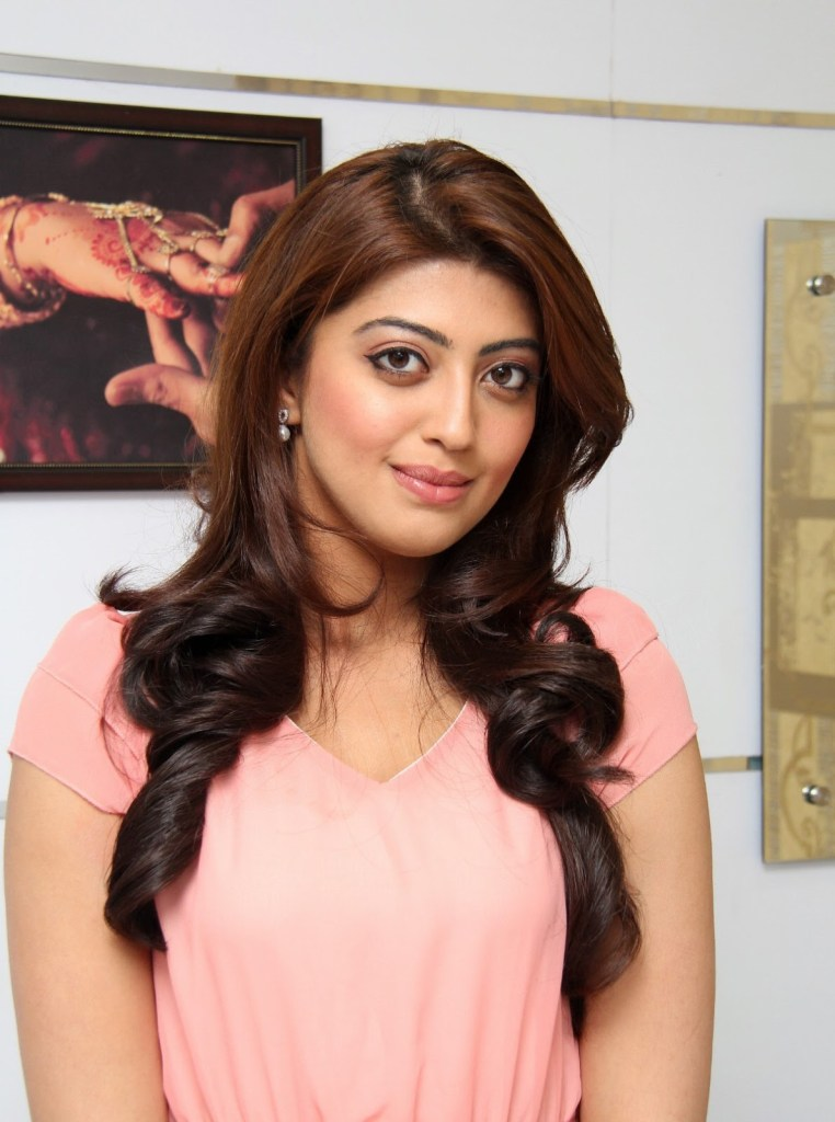38+ Lovely Photos of Pranitha Subhash 115