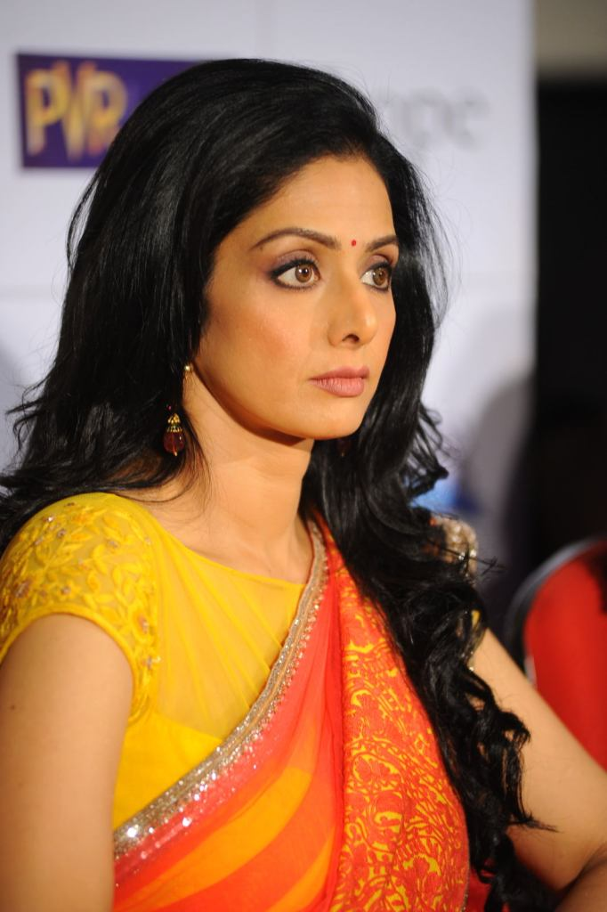 12+ Beautiful Photos of Sridevi 86