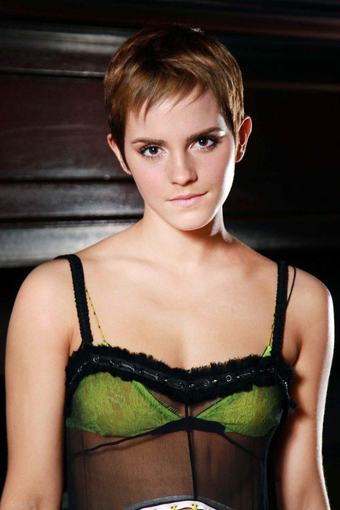 43+ Glamorous Photos of Emma Watson 24