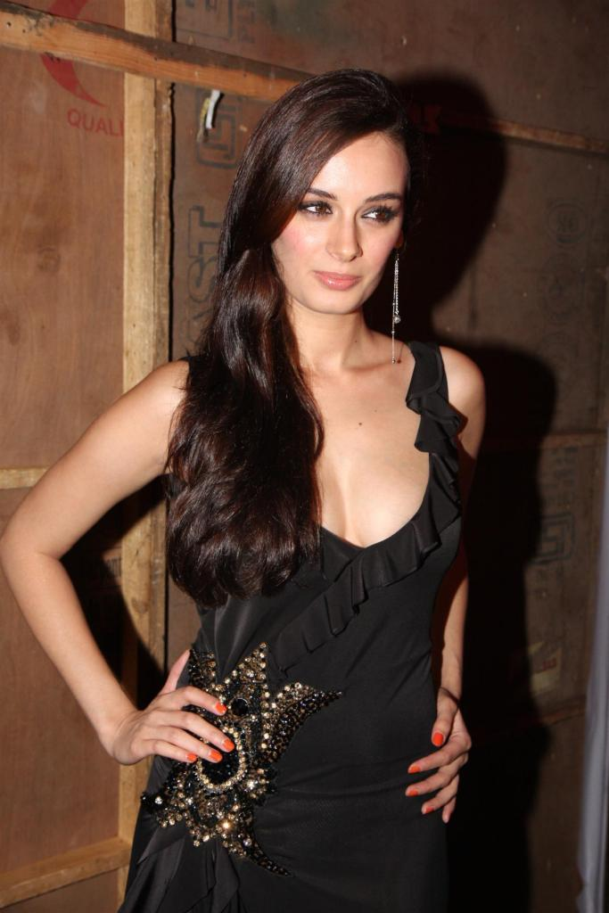39+ Charming Photos of Evelyn Sharma 38