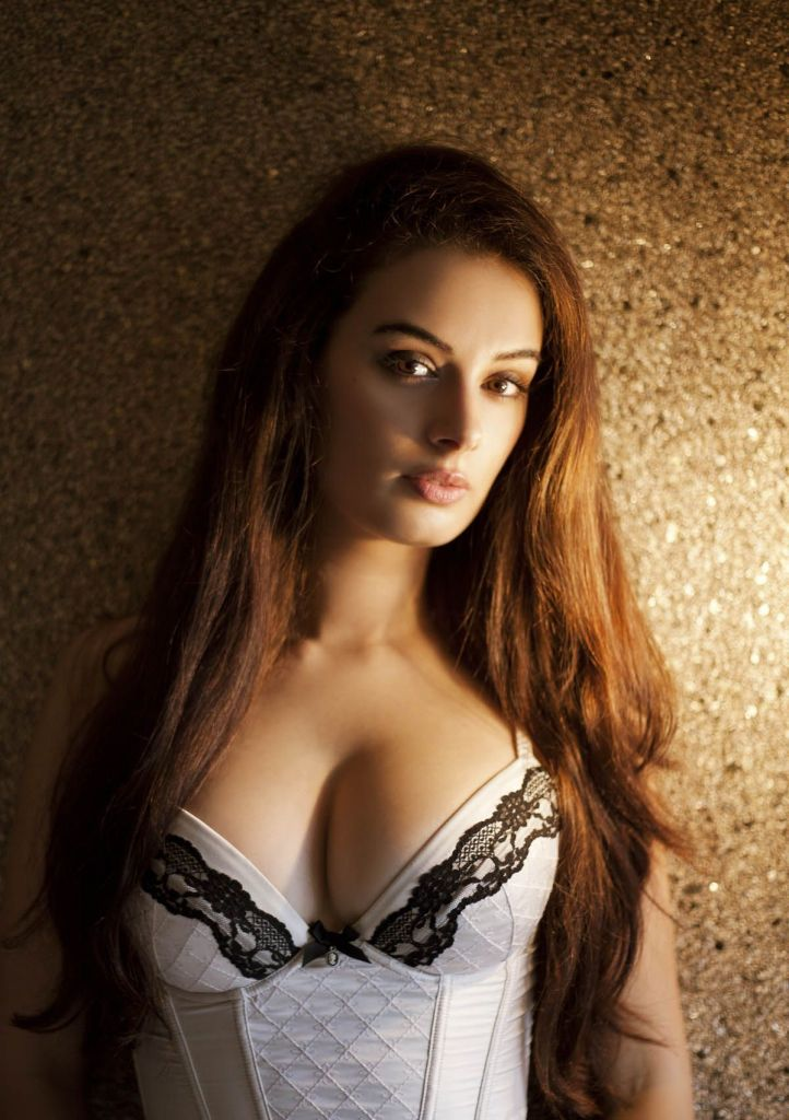 39+ Charming Photos of Evelyn Sharma 9