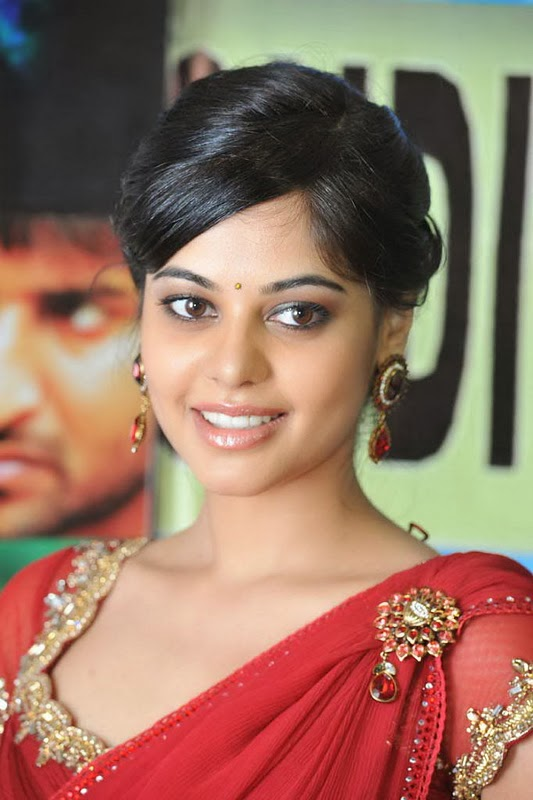 39+ Gorgeous Photos of Bindu Madhavi 5