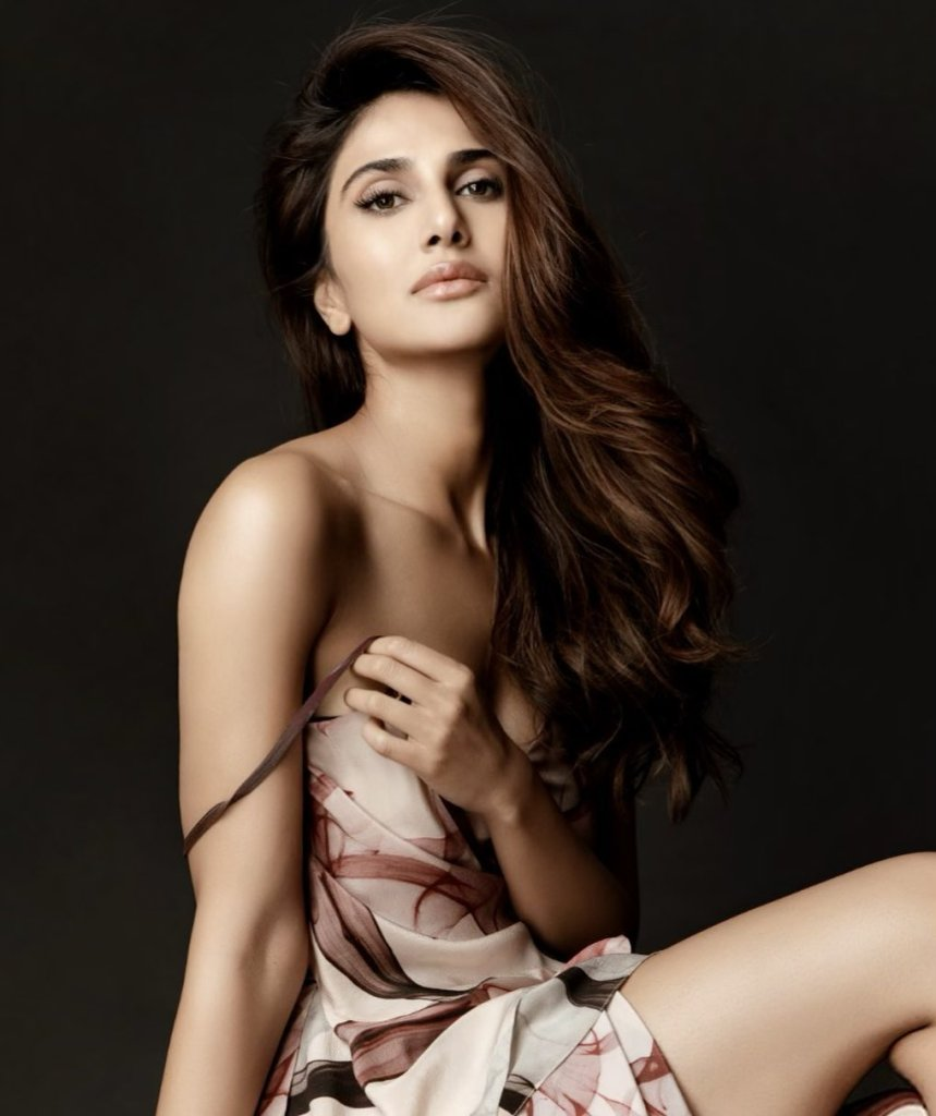 36+ Stunning Photos of Vaani Kapoor 102
